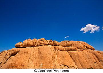 Joshua, árbol, nacional, parque, enorme, rocas, Yuca,...