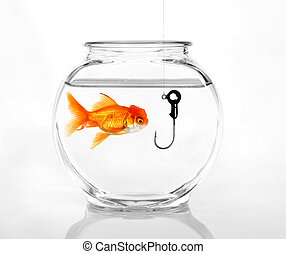 Phishing for Information - Hook in a Fish Bowl Concept of...