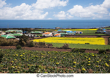 Beautiful Jeju Island in South Korea