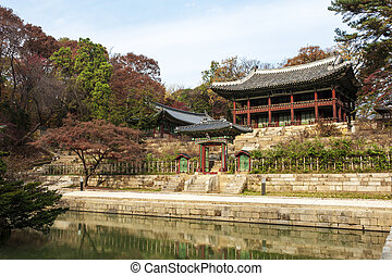 Palace in south korea,Changdeokgung