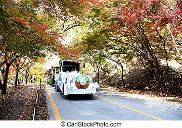 Beautiful autumn mountain in South Korea,Jungeup, Naejangsan