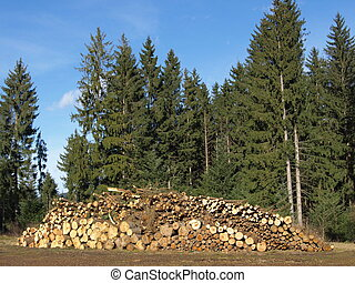 woodpile - timber yard with woodpile ready to chaff
