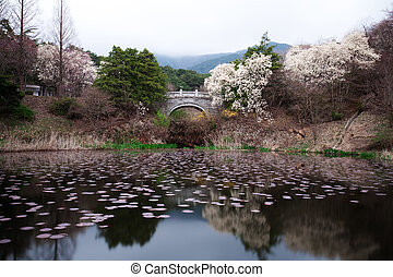 Temples in South Korea,Bulguksa, Gyeongju