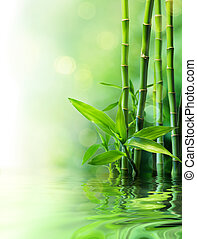 bamboo stalks on water - blurs - bamboo stalks on water -...