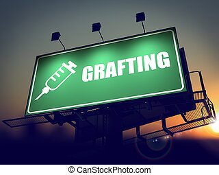 Grafting - Billboard on the Sunrise Background - Grafting...