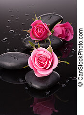 Spa stone and rose flowers still life Healthcare concept
