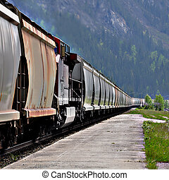 Freight train. - Long freight train in Canadian rockies.