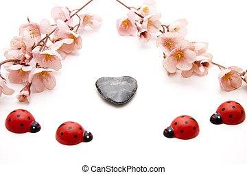 Heart stone and beetle on white background