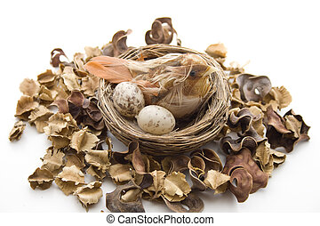 Bird nest with potpourri on white background