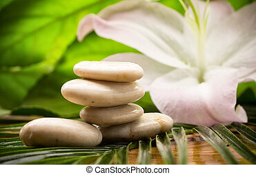 Spa stones. - Balanced spa stones with green leaves...
