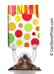 shopping dog - dog holding a shopping bag lying upside down