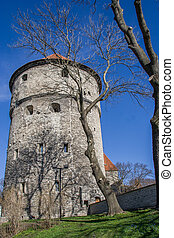 Fortification tower in the old center of Tallinn