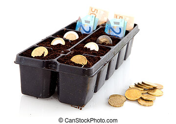 Making money by sowing it in the sand