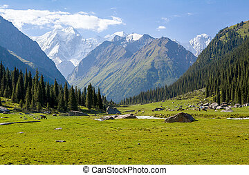 High mountain peak in Kyrgyzstan - High mountain peak. Tien...
