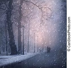 Walk in the Park - Winter day, passersby walk in Mariinsky...