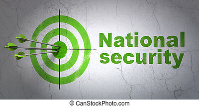 Success privacy concept: arrows hitting the center of target, Green National Security on wall background, 3d render