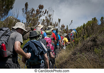 A group of trekkers passing through the moorland zone on...