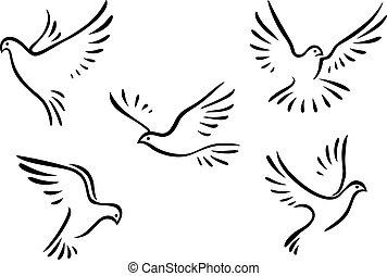 Palomas, palomas, Conjunto