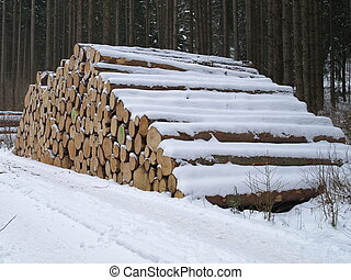 woodpile - timber yard with woodpile in winter