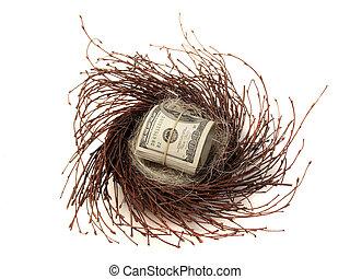 Retirement Nest Egg - roll of $100 bill representing savings