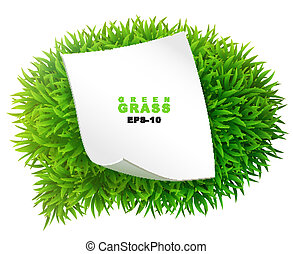 Grassy communication bubble with a clean sheet of paper