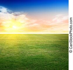 Summer field background. Natural landscape