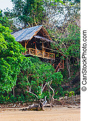 Hut in the jungle by the sea on a deserted island