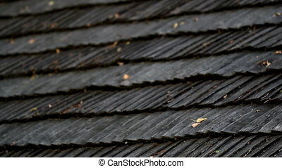 Leaves on top of the cedar wooden roof shingles