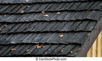 Black cedar wooden roof and some wilted leaves