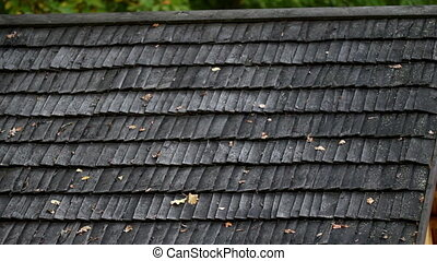 Old black cedar wooden roof with wilted leaves