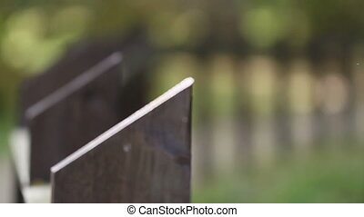 Black wooden steel fence - Black steel fence that is...