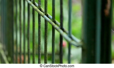 Long steel prison fence - Long steel fence is used to make...