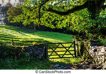 Country scene with farm gate - View of a farm gate set in...