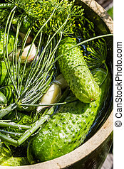 Pickling fresh cucumbers in a clay pot