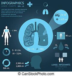 Lungs Infocharts