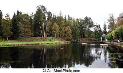 Beautiful scenery of lake and rows of trees where you can...