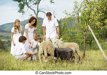 Family feeding animal on the farm - Family with five kids is...