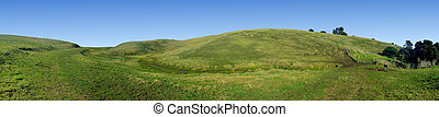 Panoramic view of grass covered rolling hills