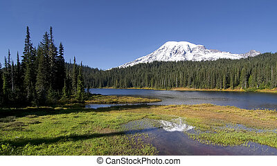 Reflection lake, Mt Rainier - Early autum morning at...