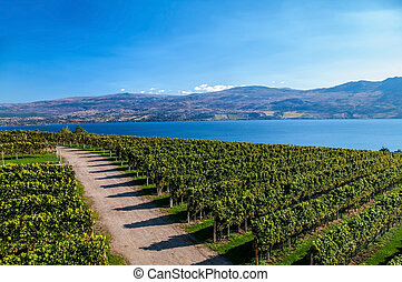 View from Mission Hill Winery of Lake Okanagan and the...
