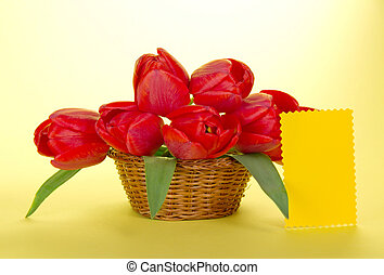 Bouquet of red tulips in basket - Bouquet of red tulips in a...