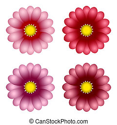 Varicoloured flowers, for the decoration of postals, scopes...