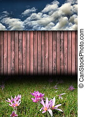 backdrop with wild flowers and fence