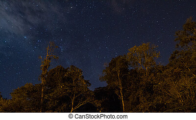 Starry Night Stock Photo - A starry night in Malaysia...