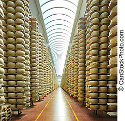 view of a maturing storehouse of Parmesan cheese