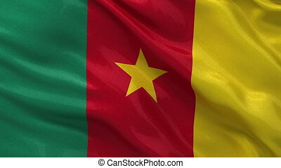 Flag of Cameroon seamless loop - Flag of Cameroon waving...