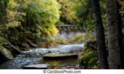 Stone bridge from afar and stream flowing freely on big...