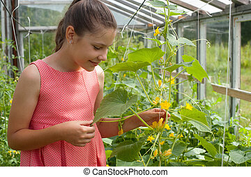Girl in the greenhouse
