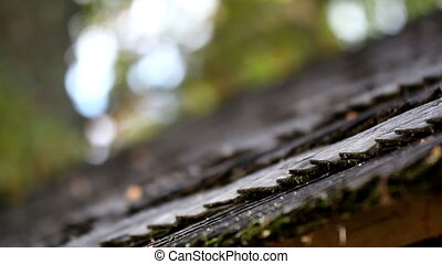 Black wooden roof shingles arranged neatly and you can see...