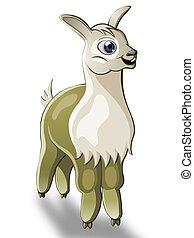 lama - cartoon lama on white background